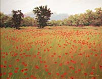 Painting: Poppy Fields, by Gordon Haas